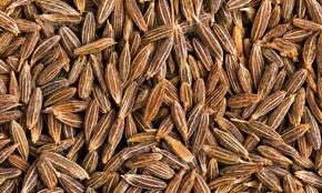 Iran Cumin Seed